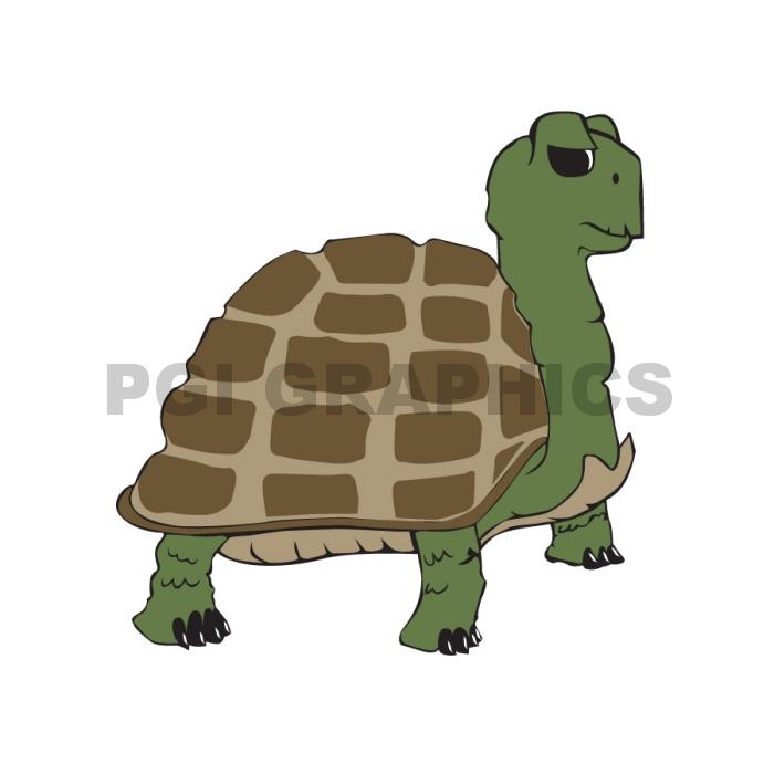 Turtel
