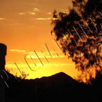 011 Sunset
