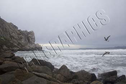 016 Morro Rock